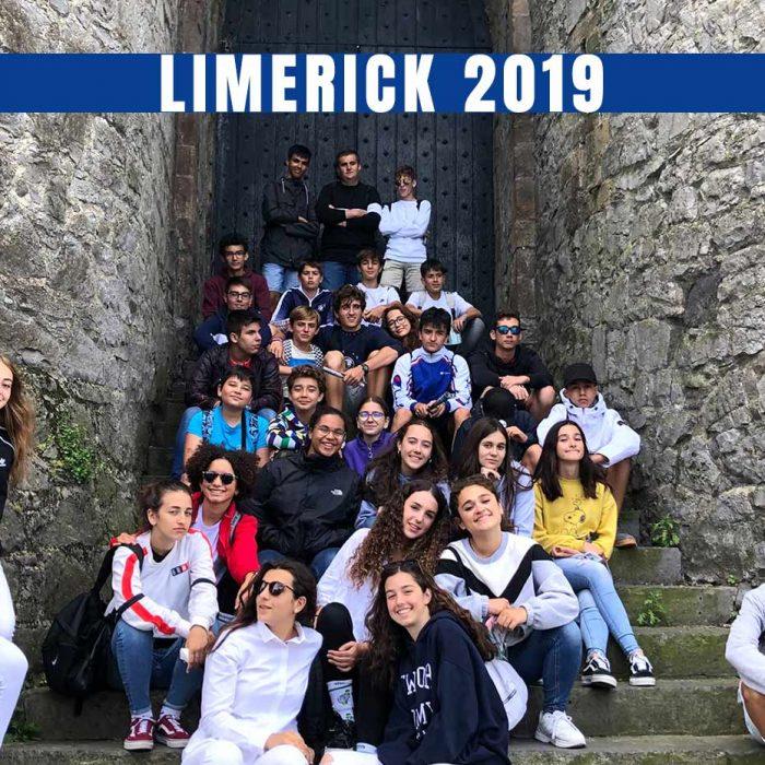 Program Review: LIMERICK 2019