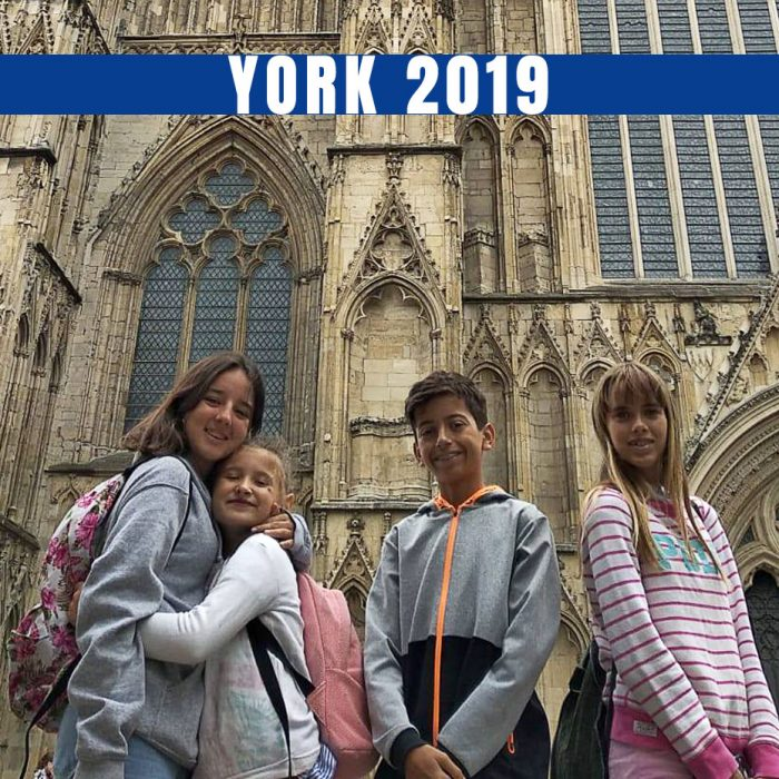 Program Review: YORK 2019
